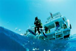stage advanced open water diver padi