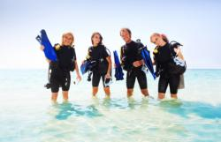 stage open water diver padi