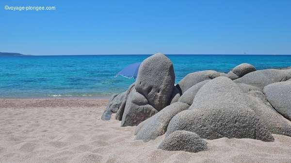 Partez plonger à l'étranger avec voyage-plongee.com